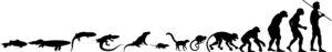 Perinteinen kuva ihmisen evoluutiosta, joka on herättänyt paljon keskustelua.