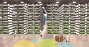 Kuva 1. Ehkäpä vielä minun aikanani maatalous on tällaista. [NPR]